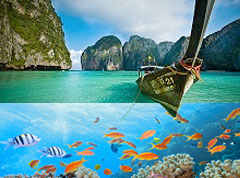 Phi Phi Islands Sightseeing & Snorkeling Safari – 2 Day 1 Night